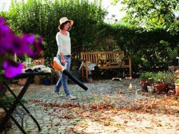 Herbstputz im Garten