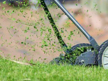 Rasen wird gemäht