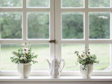 Glastausch statt Fenstertausch.